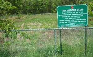 rain garden basin
