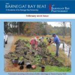 barnegat bay beat newsletter image