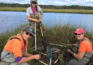 photo of scientists involved in Wetlands and salt marsh research