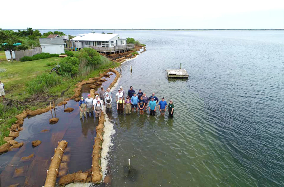 sedge island barnegat bay volunteers living shoreline